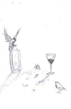 Wine and Birds