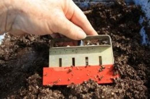 making mini soil blocks