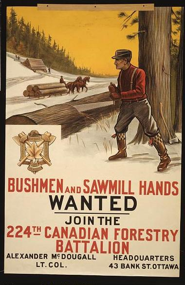 Canada WW I Poster seeking Bushmen and sawmill hands wanted. Join the 224th Canadian Forestry Battalion  (Photo courtesy of U.S. Library of Congress, Prints &  Photographs Division, WWI Posters,reproduction number,[LC-USZC4-12676])