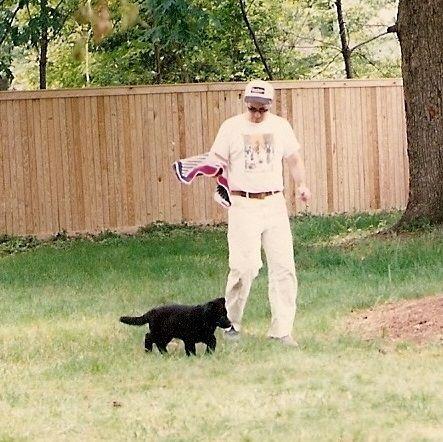 Kinder the black German Shepherd puppy at 9 weeks.