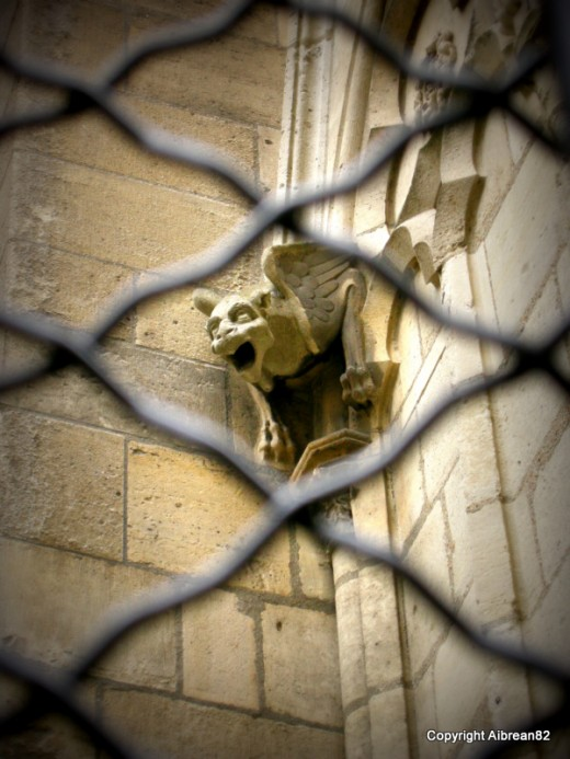 One of the many gargoyles on the Notre Dame in Paris, captured through the fence surrounding the cathedral.