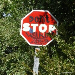 Don't stop walking, Camino de Santiago