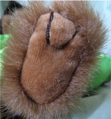 Foot of bear, showing pad material and stitching