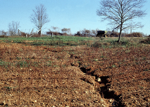 Rill erosion on a slope. Source: http://www.soils.usda.gov/