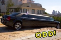 Funny Facts about Limousines You Probably Did Not Know