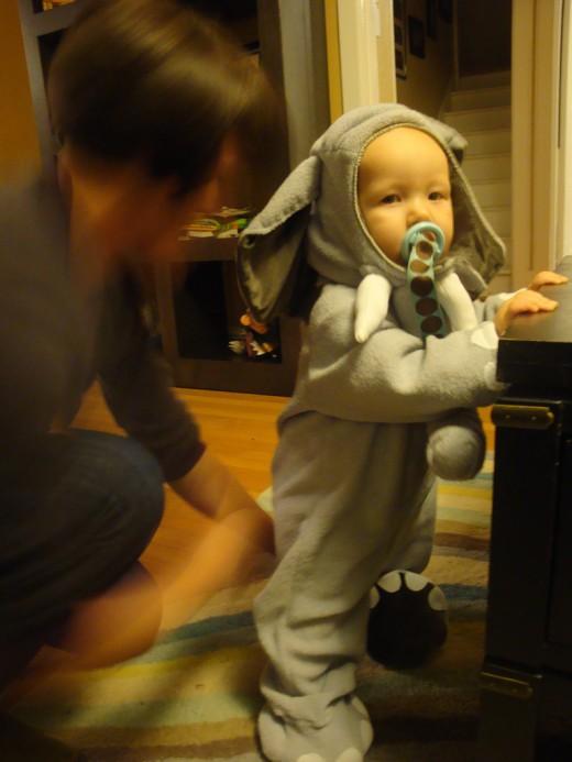 Cute Baby Elephant!