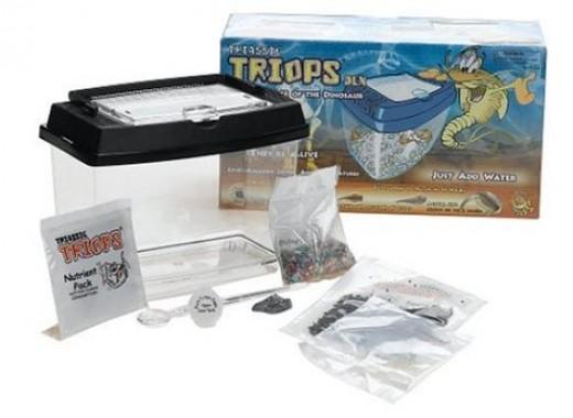 Deluxe Triassic Triops