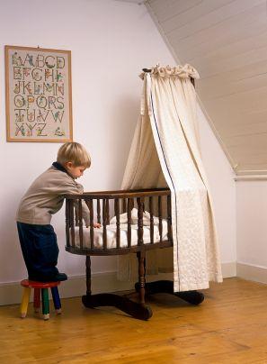 eco baby bassinet
