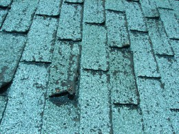 these asphalt shingles are about twelve years old and might not make it through another bad hail storm which could creat leaks that damage the inside walls