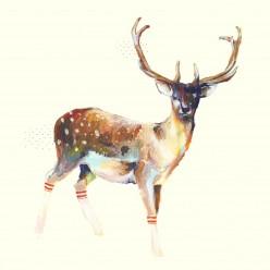 Deer Wearing Gym Socks Mini Art Block Print