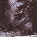 Robert Frost Winter Poems