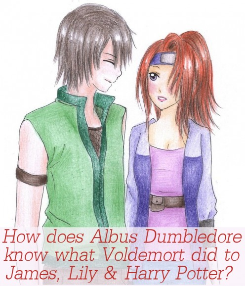 How Does Albus Dumbledore Know What Voldemort Did To James, Lily And Harry Potter from the HP series by J.K. Rowling?