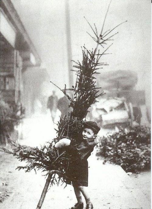 Christmas Tree Nostalgia