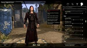 The Elder Scrolls Online Leveling Guide