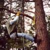 Tree Climbing: How to Spur Climb a Tree