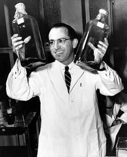 Jonas Salk at the University of Pittsburg where he first developed the Polio vacine