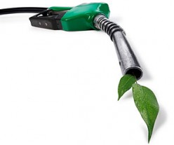 Why We Need Alternative Fuels. What Our Options Are.