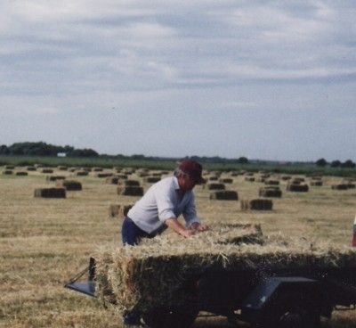 Faithfully baling and carting hay to feed those hungry Farm Friends.