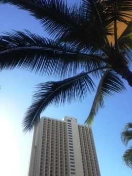 With the blue sky and palms framing every photo, you shouldn't have a difficult time snapping some beautiful photos that are a departure from the regular fare.