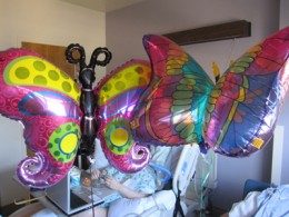 Sophie's favorite butterfly balloons.