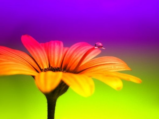 waterdrop photography Color my World by Arnaud S.