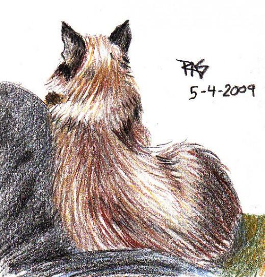 """My Cat Has Black Ears"" Robert A. Sloan, 2009."
