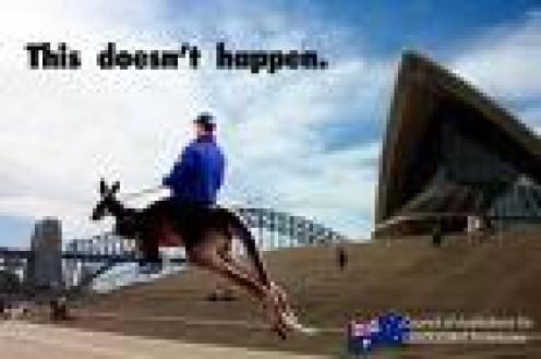 Blondepoet riding the kangaroo to work.