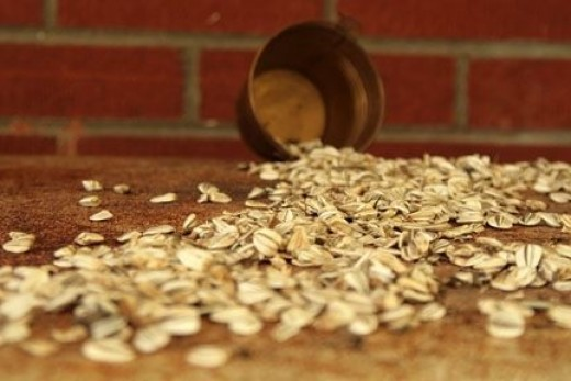 sunflower-seeds-with-blurred-foreground-and-background