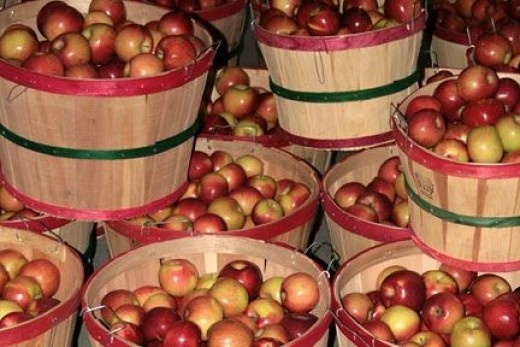 Baskets Of Red Apples