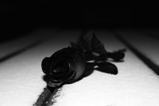 fake-black-rose-on-a-snow-covered-table