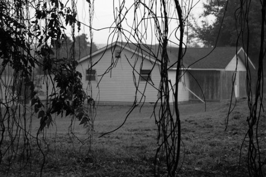 spooky-house-and-vines