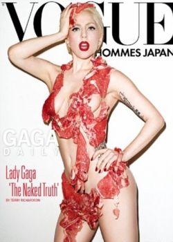 LADY GAGA MTV 2010 MEAT costume