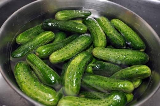 Old Fashioned Sour Pickle Recipe