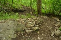 One of the trails at Swope Park