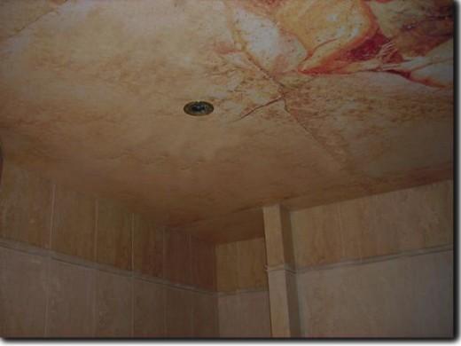 Ancient Rome on bathroom ceiling