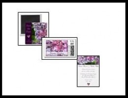 Coordinating Hydrangea Collections