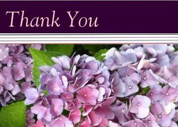 Hydrangea Thank You Note Cards