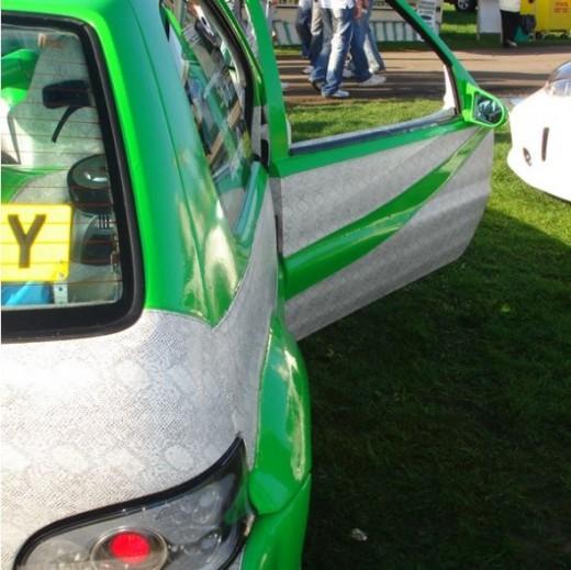 Snakeskin covered cars