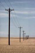 Miles of Telephone Poles