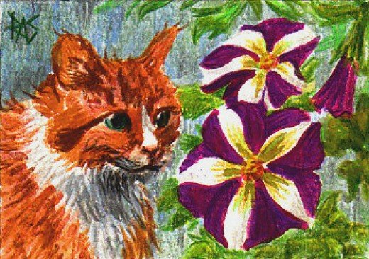 Soggy Moggy Vs. The Purple Petunias, by Robert A. Sloan
