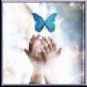 Macs LM profile image