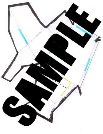 Shin sample - Kneecap