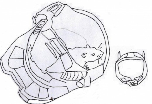 Free coloring pages of halo mongoose for Mongoose coloring page