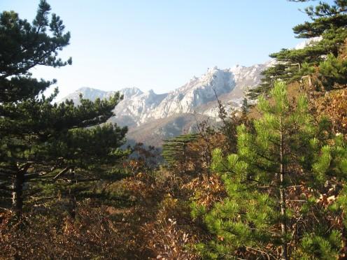 Mt. Velebit, Croatia, photo by Tatjana-Mihaela