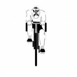 Biking With Bad Knees