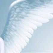 angel uriel87 profile image