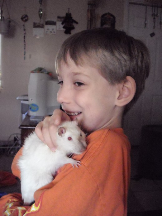 My little brother and his pet rat Starlight, before she passed away last year.