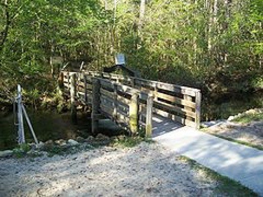 Wooden bridge across Sandy Creek to one of the nature trails at the Park.        credit:  Florida State Tourism Guide
