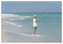 Top-sail Hill Preserve State Park,  a beautifully clear tourqoise gulf fishing  beach area.
