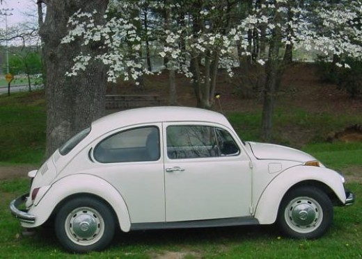 Someone's first 1972 VW BUG